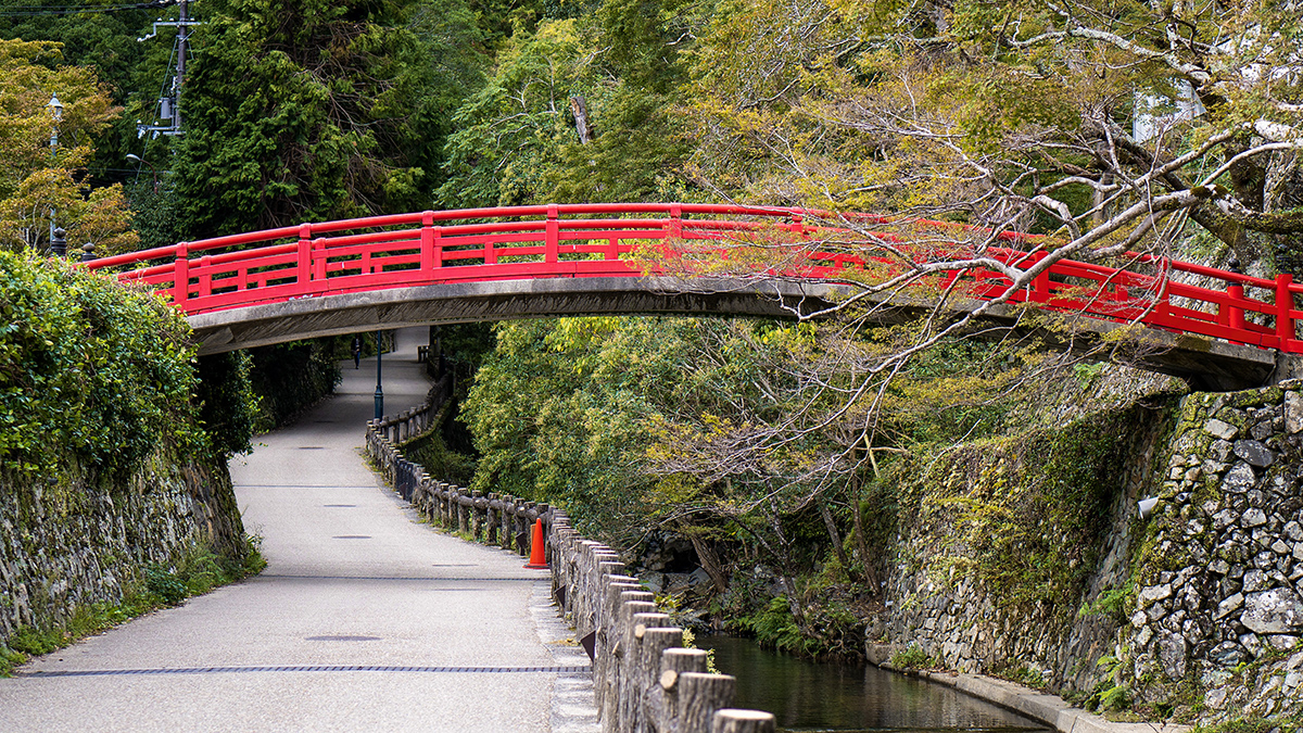 a red bridge goes over a pathway in the forest.